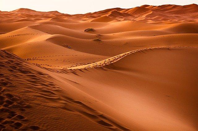 Medio Oriente e Nord Africa: ondate di calore fino a 56 gradi Celsius senza azione per il clima