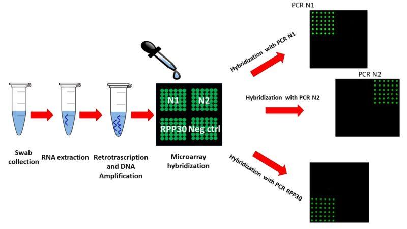 Nuova tecnologia per identificare il SARS-CoV-2 nei tamponi
